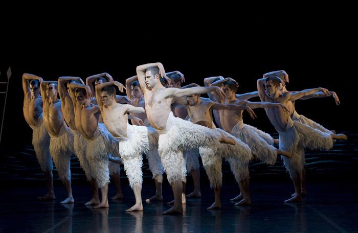 Matthew Bourne's Swan Lake - Male Swans Winsor