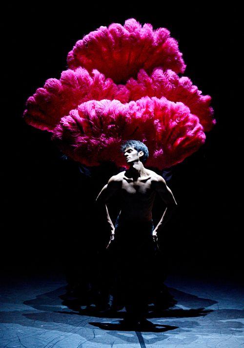 1. Constantine Allen in Fancy Goods by Marco Goecke, Stuttgart Ballet 2013, Copyright Stuttgart Ballet