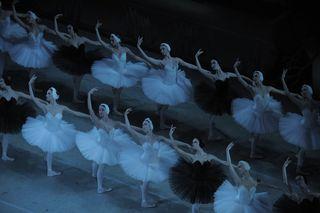 Swan Lake by V.Baranovsky (16)