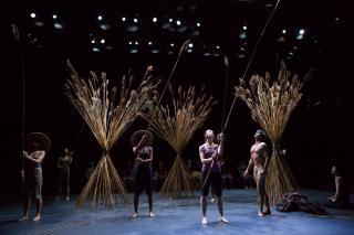 2. reeds